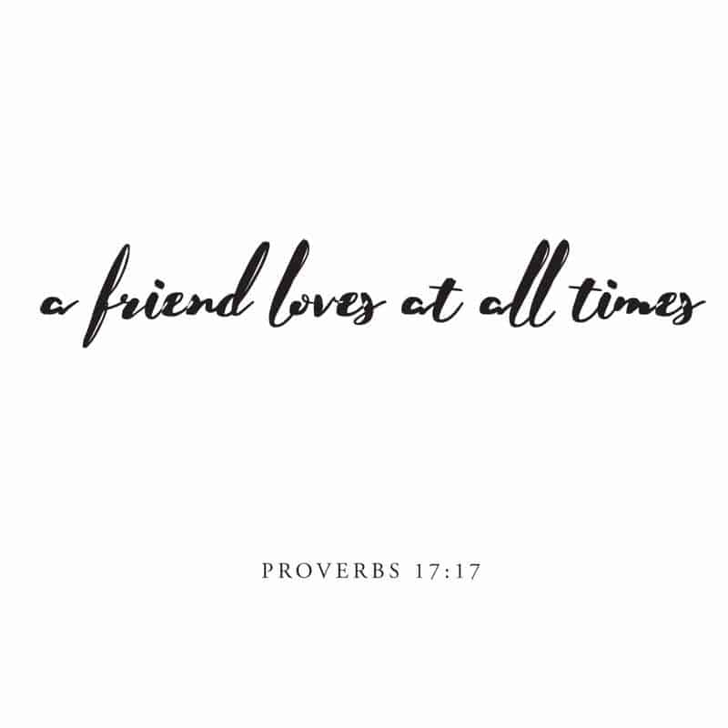 a friend loves at all times verse