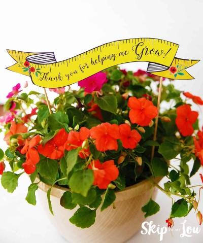 blooming flower teacher gift