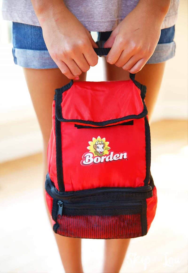 borden lunch bag