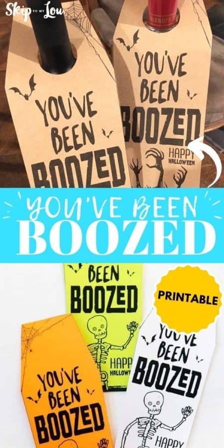 you've been boozed PIN