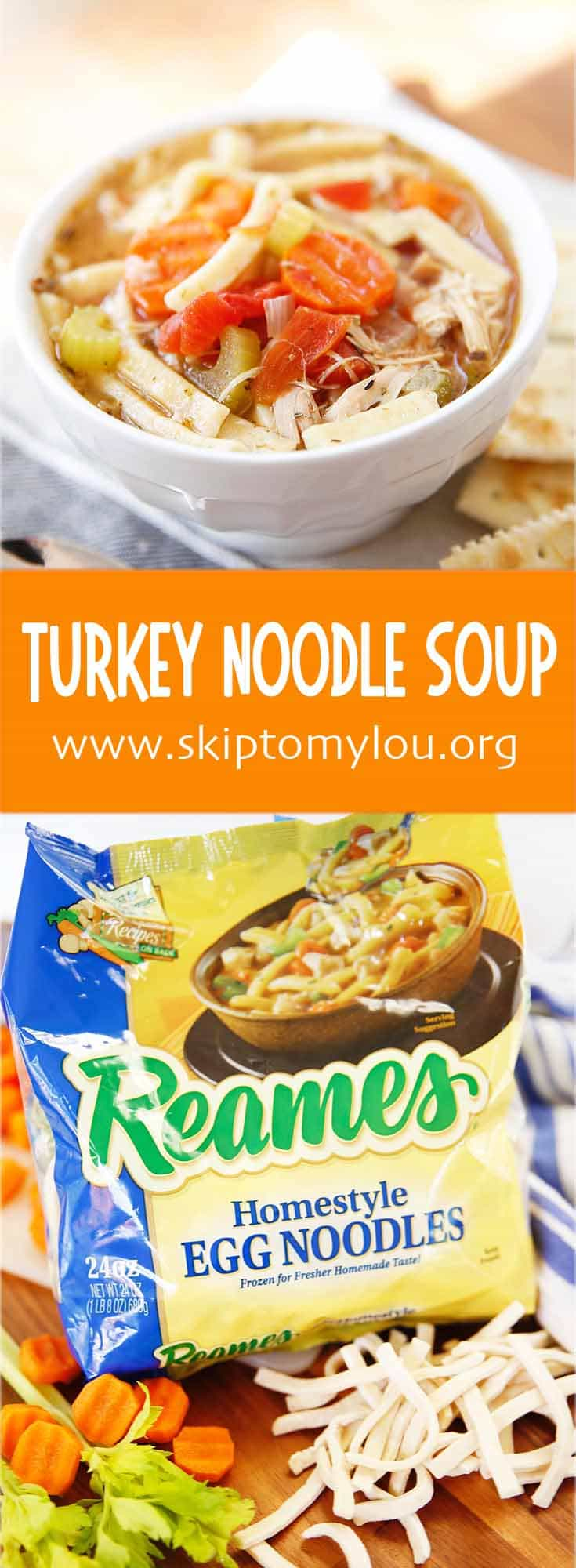 turkey noodle soup pin