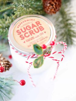 peppermint sugar scrub recipe skiptomylou.org