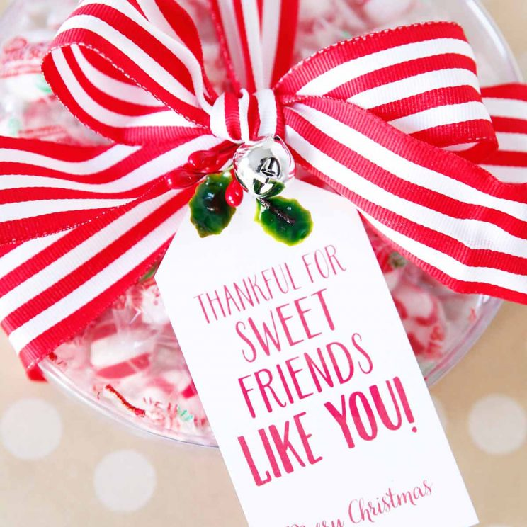 Cute Sayings for Christmas Gifts | Skip To My Lou