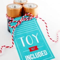 batteries with toy not included gift tag