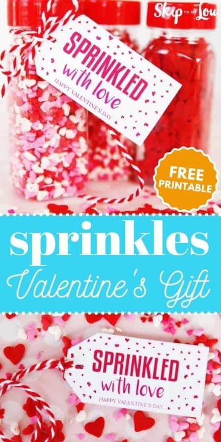 sprinkles valentines gift PIN