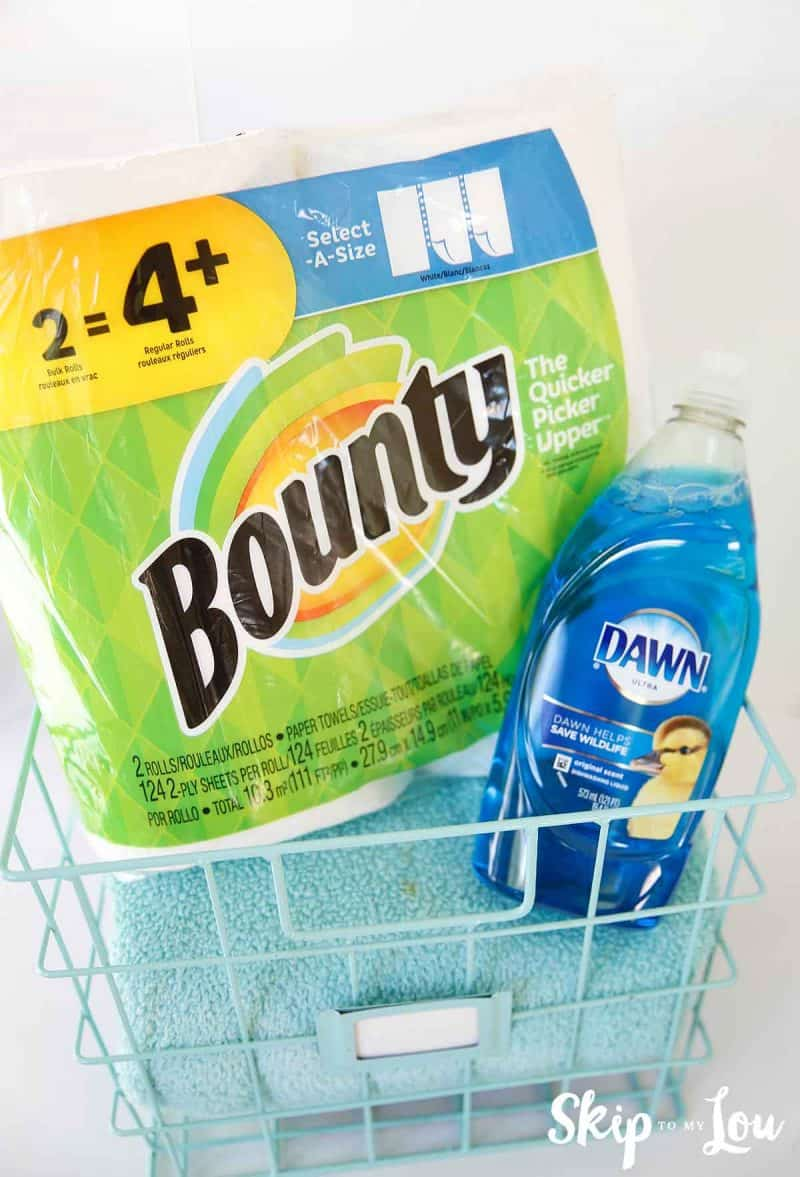 Bounty Paper Towels and Dawn Detergent