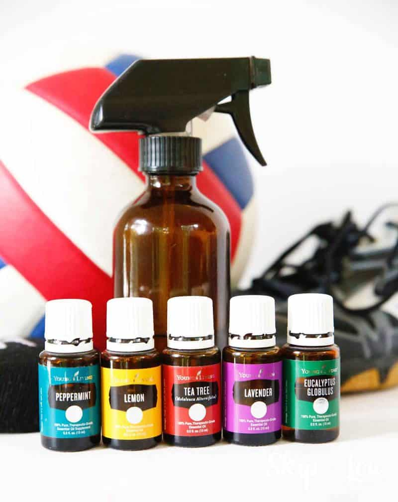 Deodorizer Homemade Spray for Sports Equipment