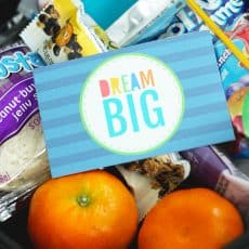 dream big lunch box notes