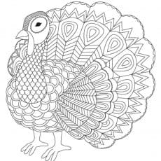 Turkey Coloring Sheet printable