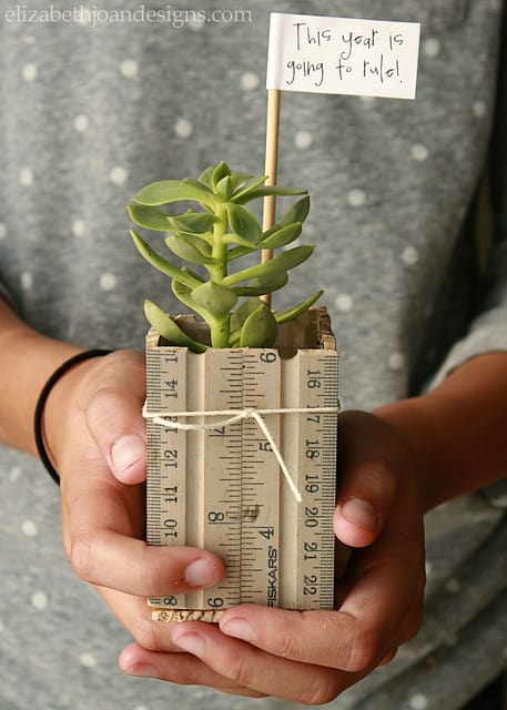 hands holding planter made of rulers succulent