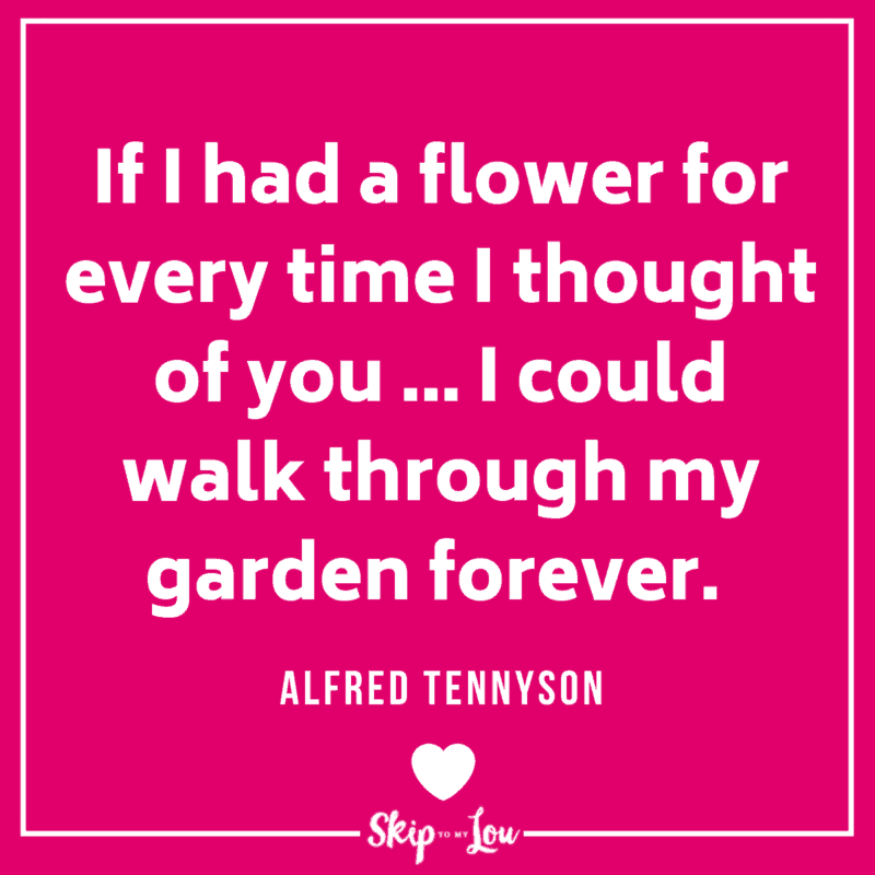 If I had a flower for every time I thought of you ... I could walk through my garden forever. Alfred Tennyson