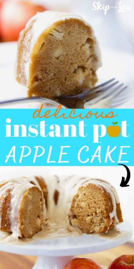 instant pot apple cake recipe PIN