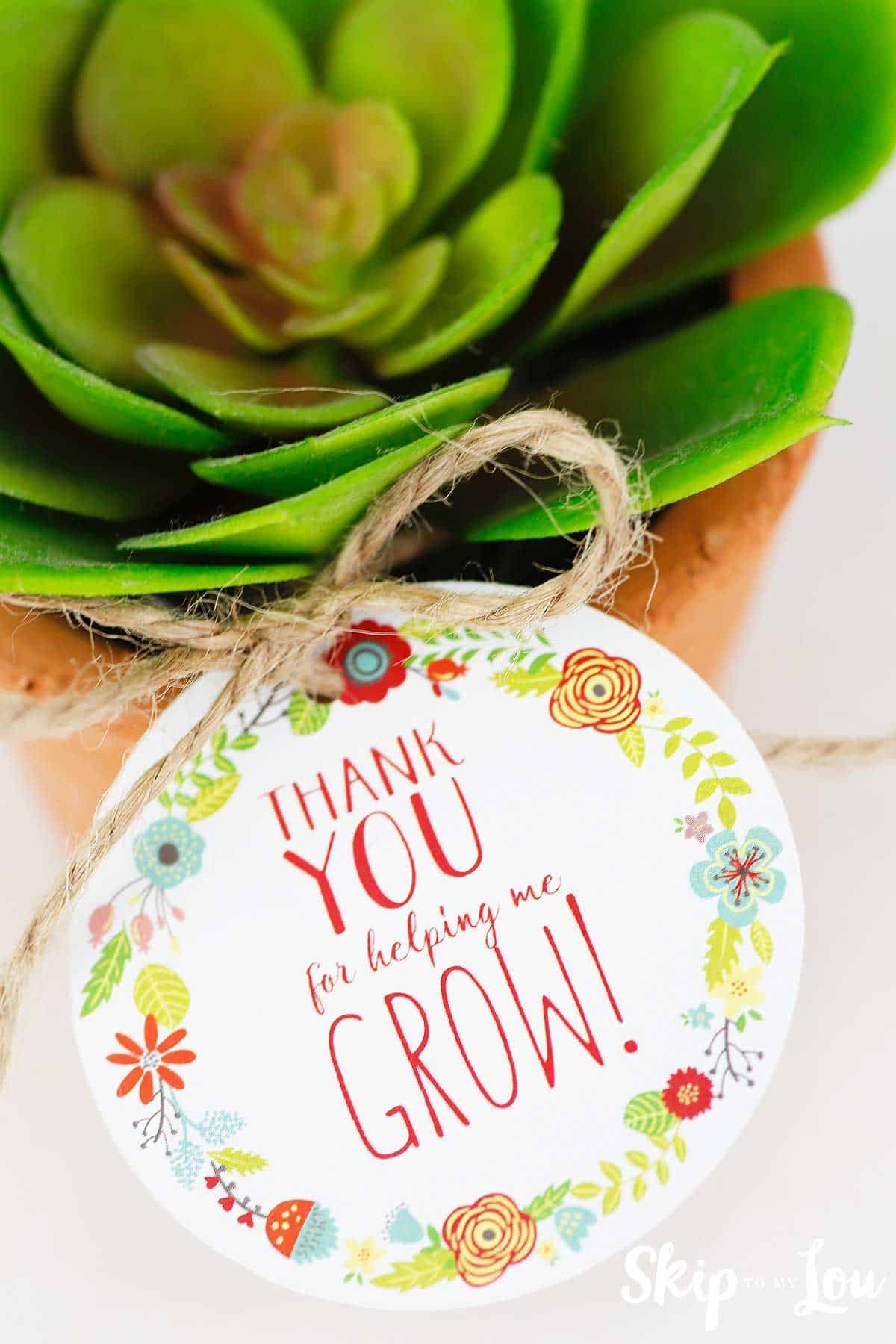 Free Printable Thank You For Helping Me Grow Gift Tags Skip To My Lou