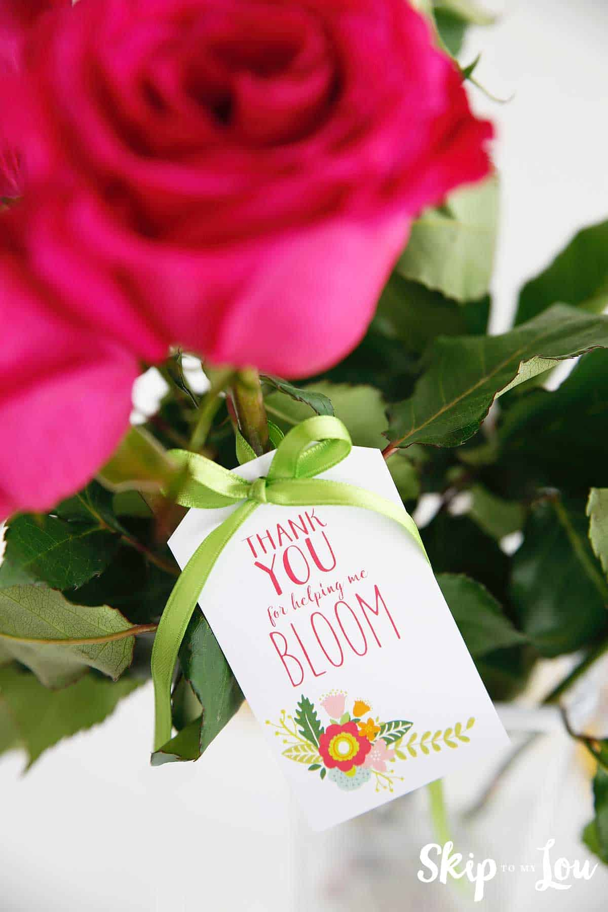 thank you for helping me bloom tag tied to pink roses