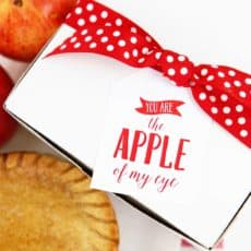 apple of my eye gift tag on box with apple pie and apple