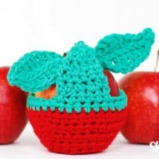 apples and apple in cozy