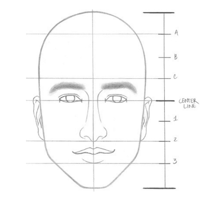 realistic face drawing guide