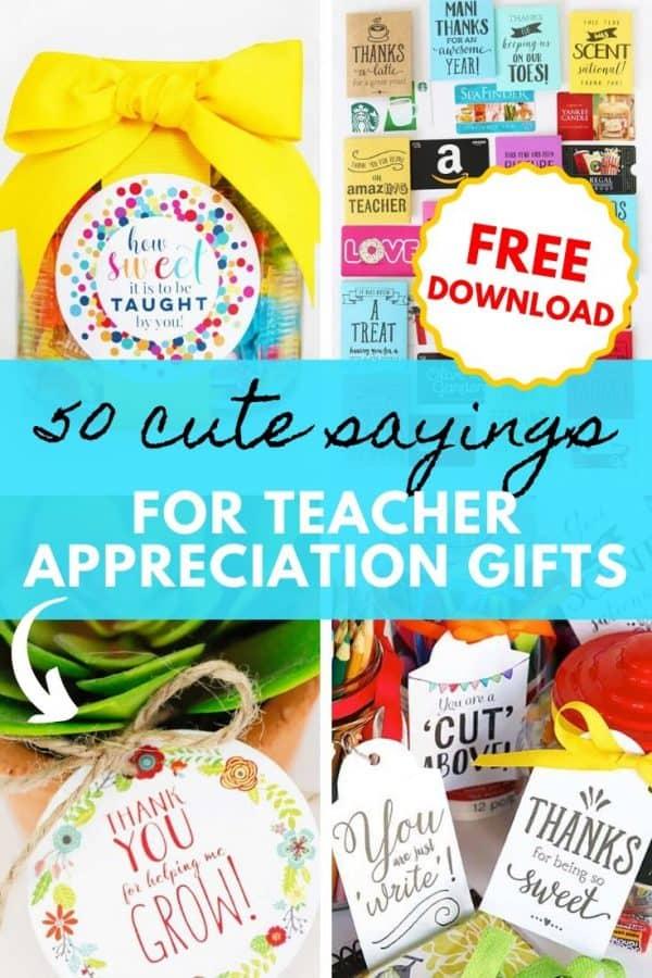 teacher appreciation gifts sayings PIN