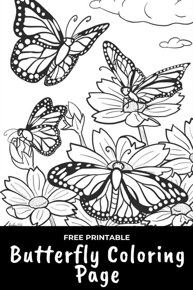 butterfly coloring page pinterest graphic