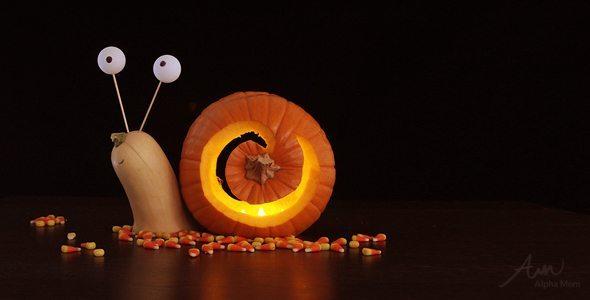 snail pumpkin