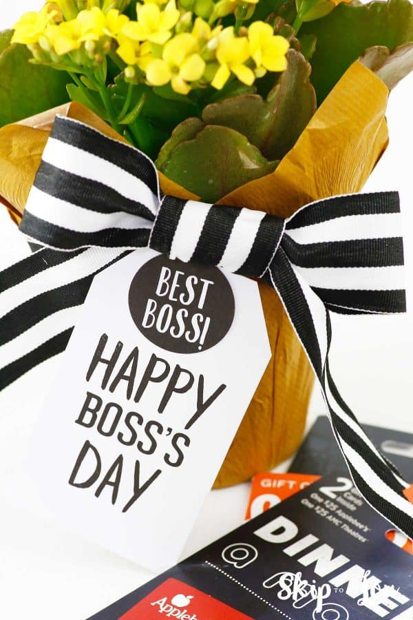 happy boss's day gift tag attached to flowers sitting by dinner gift cards