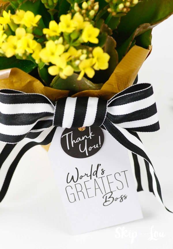 gift tag attached to pot of flowers attached with bow