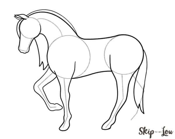 add tail to horse drawing