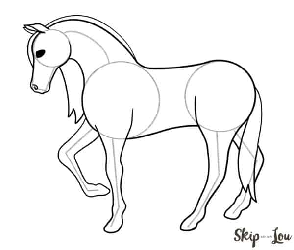complete horse drawing before erasing guide lines