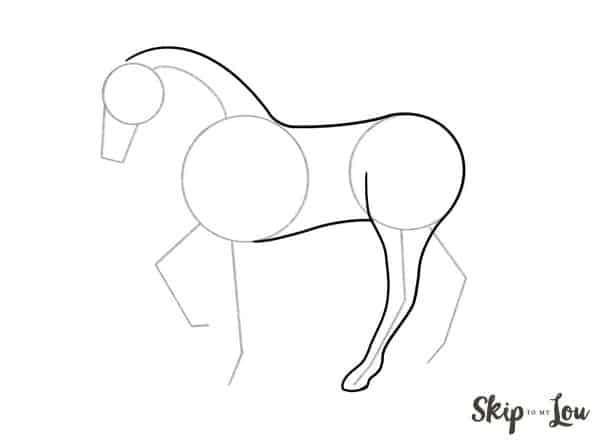 draw back leg of horse