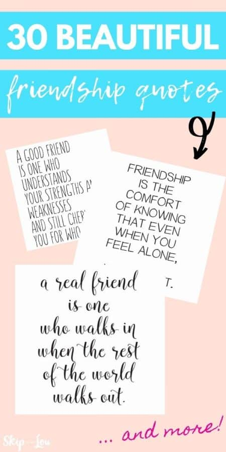friendship quotes PIN