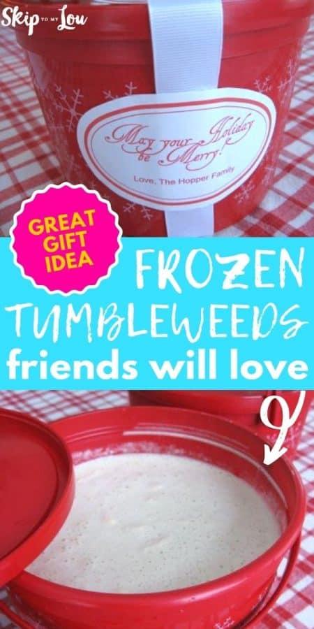 frozen tumbleweeds gift idea PIN
