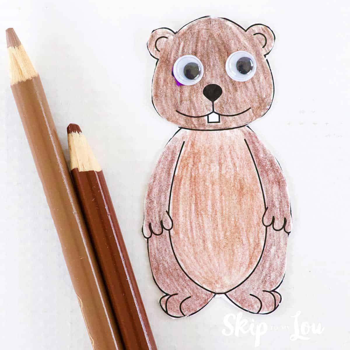 colored groundhog colored pencils