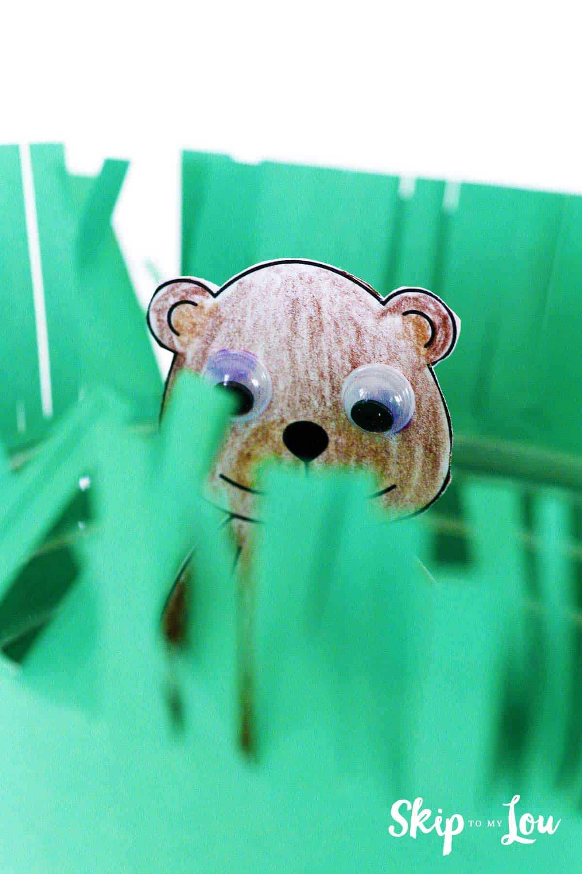 groundhog peeking through the green paper of the cup