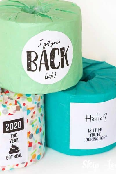 toilet paper rolls with funny sayings
