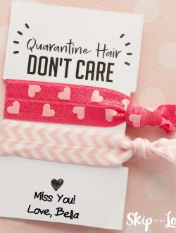 quarantine hair ties gift
