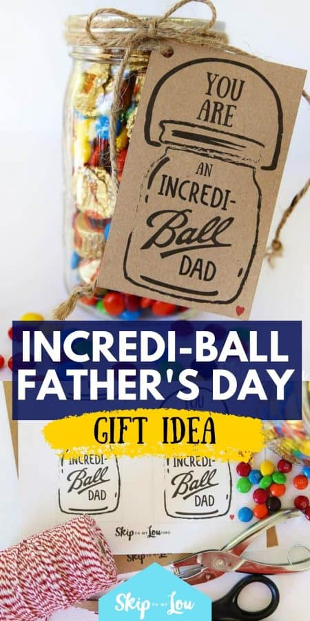 incrediball fathers day gift idea PIN
