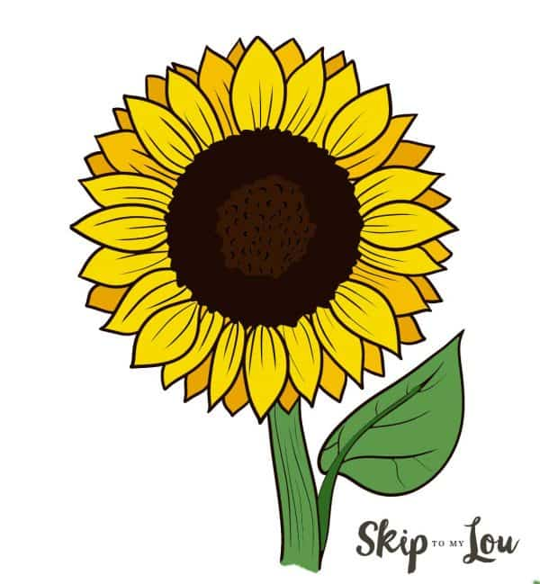 colored sunflower drawing