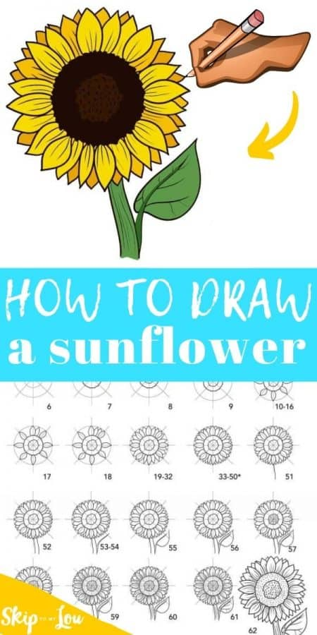 how to draw sunflower PIN