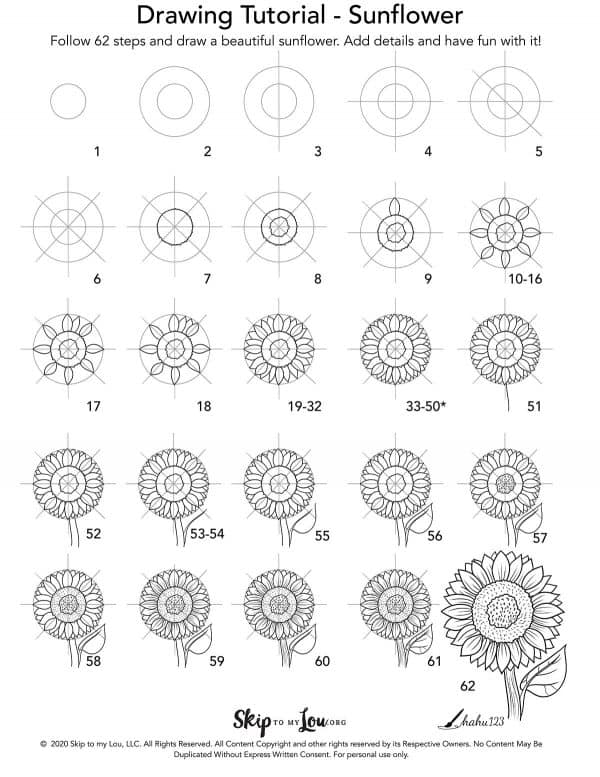 step by step illustration how to draw sunflower