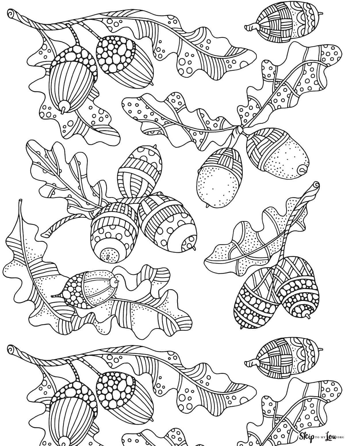 detailed acorns coloring sheet