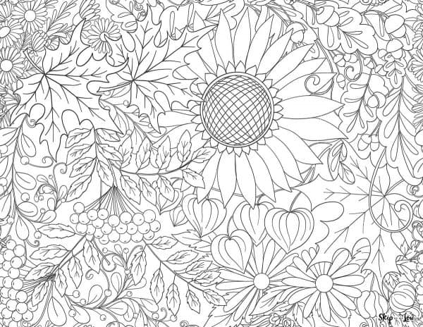sunflower and pumpkin coloring page
