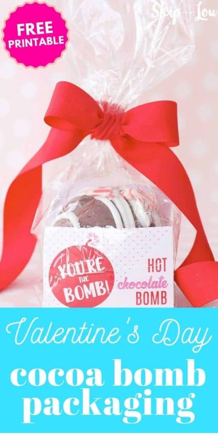 valentine cocoa bomb packaging PIN