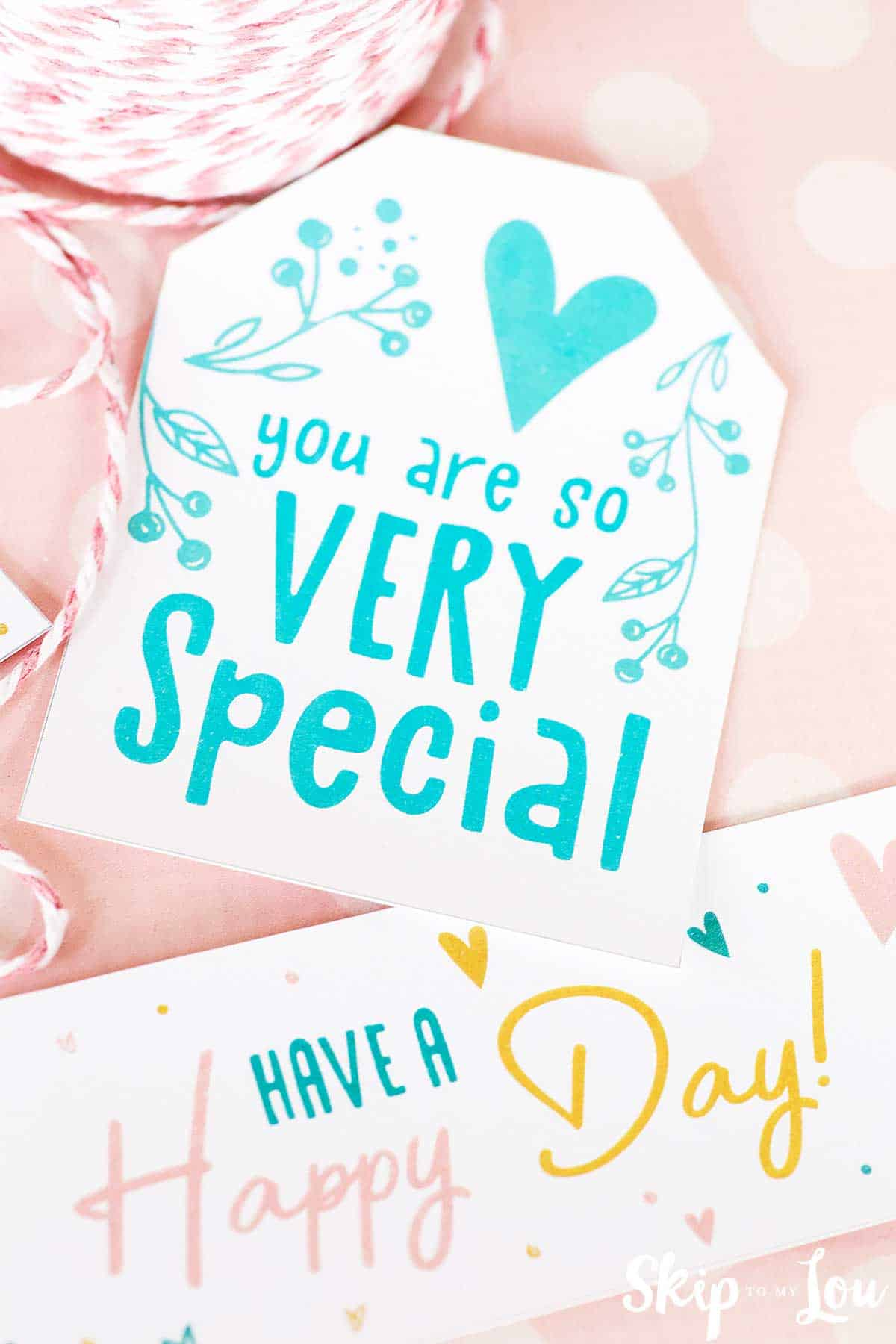 you are very special tag and have a happy day tag on pink background