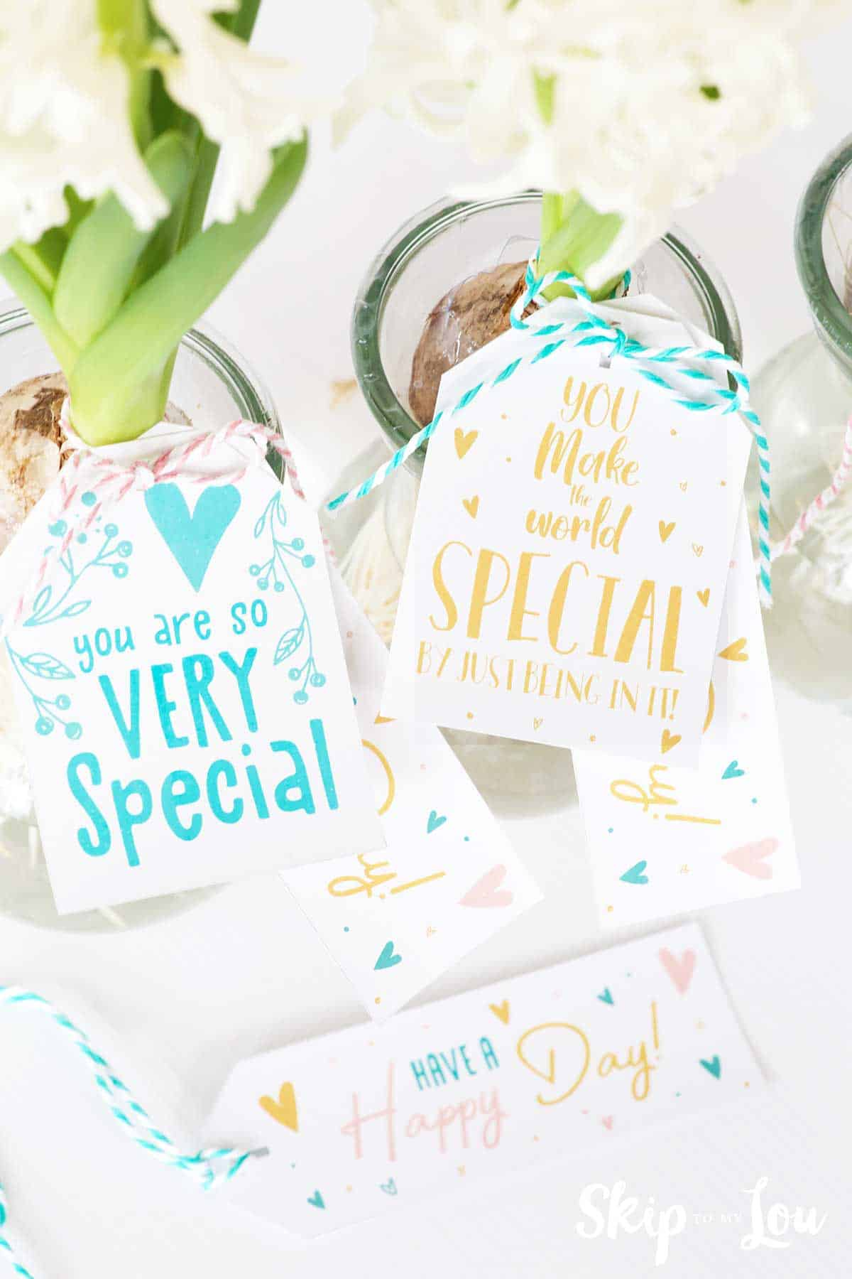 hyacinth flowers in vases with you are very special tags tied to vases with twine.