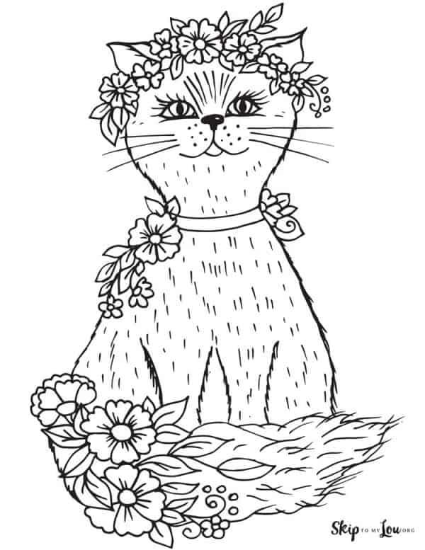 cat with flower headband
