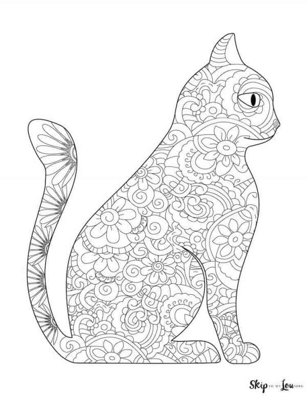 side view detailed cat