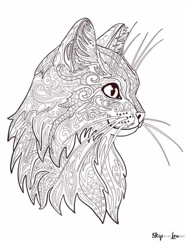 detailed cat head