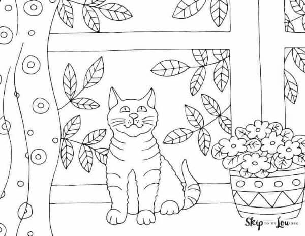 Kitten in Window