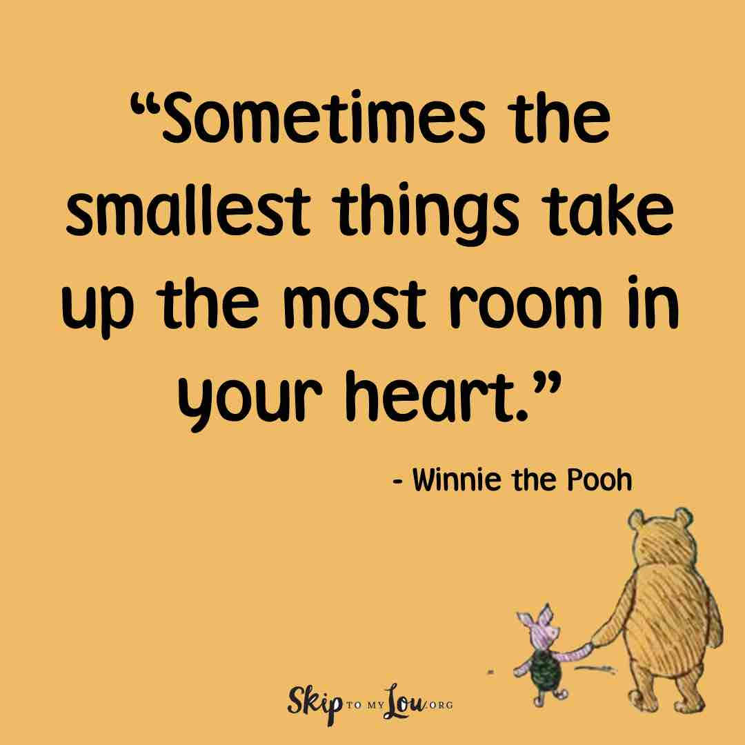 sometimes the smalled things take up the most room in your heart