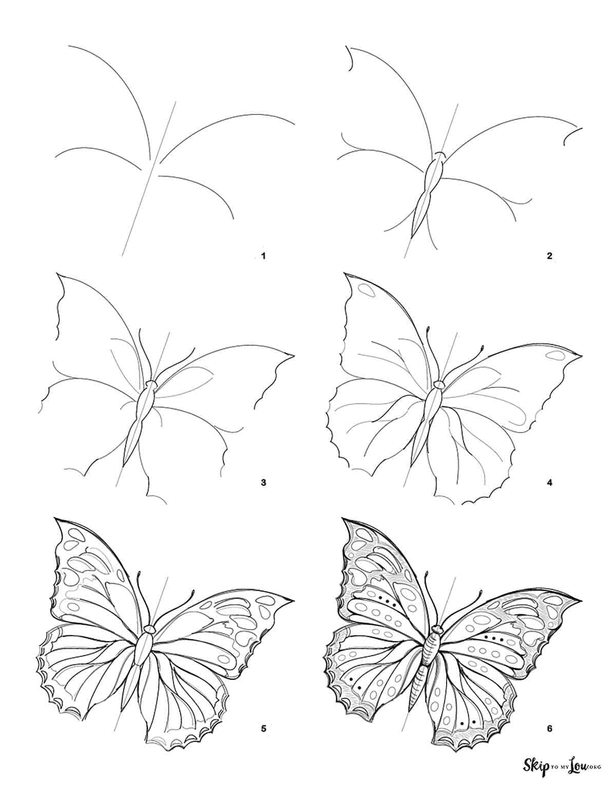 step by step how to draw a butterfly guide